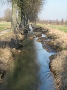Zweigkanal nach der Renaturierung 2009