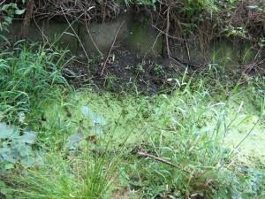 Gewässersohle mit Sohlschalen aus Beton
