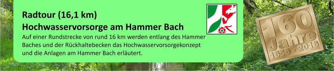 2017.05.24_Beitragsbild_RT_Hammerbach