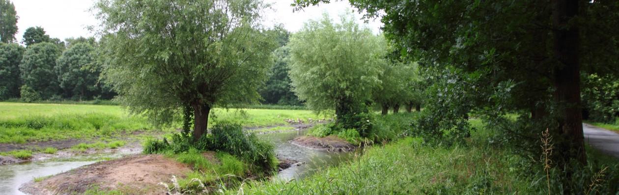 09.06.2017: Gewässerrenaturierung an der Cloer, Bettrather Dyck abgeschlossen