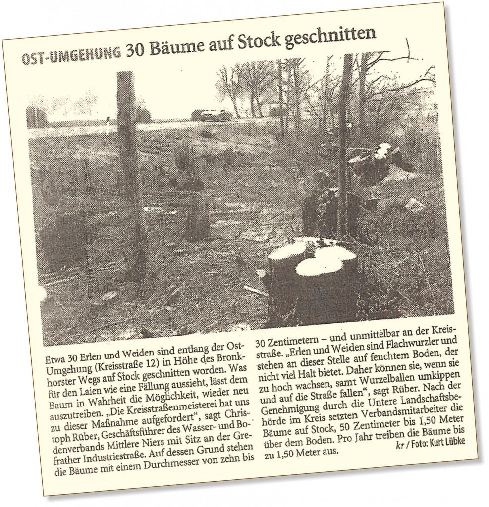 Artikel aus der WZ vom 03.03.2012